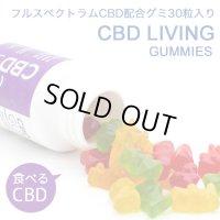 CBD LIVING - CBDグミ 30個入り